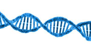 Η αναστολή ενός ενζύμου μπορεί να αναστρέψει τις βλάβες στη μυελίνη